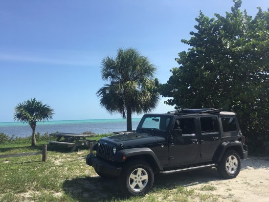 Tons of Fun Tours and Rentals: Pulled aside at one of the state parks in the keys.