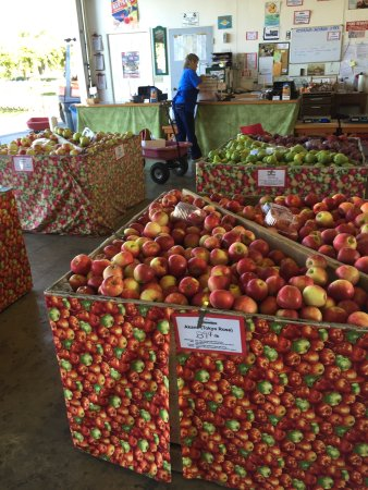 Parkdale, OR: Kiyokawa Family Orchards