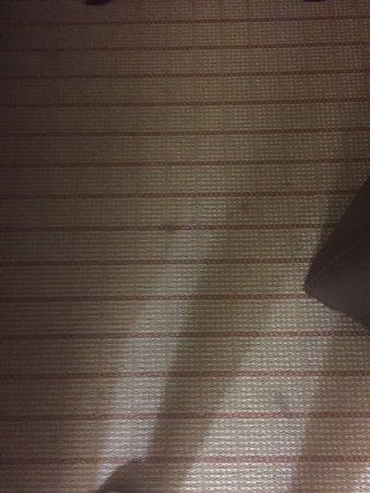 ロアノーク プラザ ホテル Image