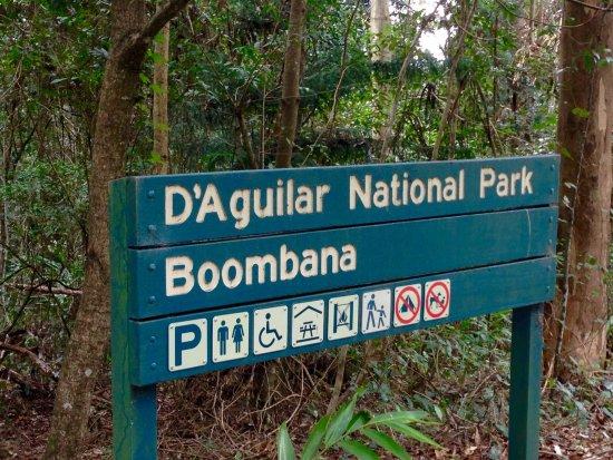 Boombana Mt Nebo Walk