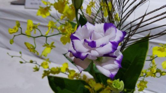 Izumo Cultural Tradition Hall : flower