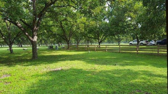 Leakey, TX: photo1.jpg