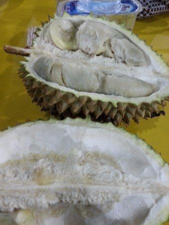 Ucok durian - Agust 2016