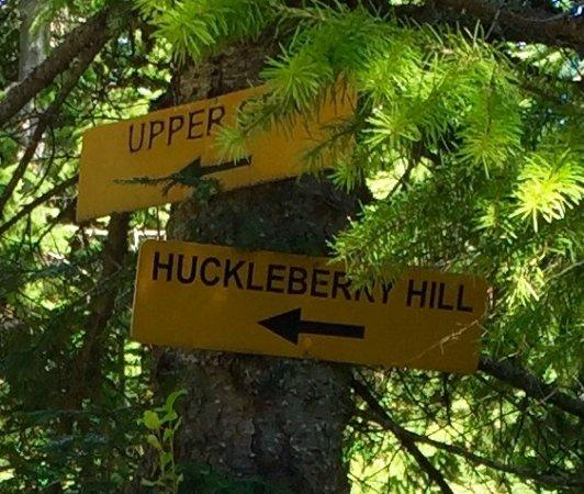 Sandpoint, ID: Hiking path