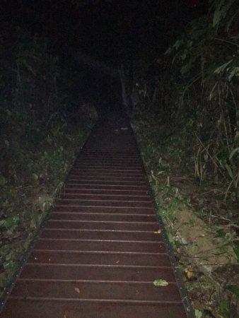 Mutiara Taman Negara : photo2.jpg