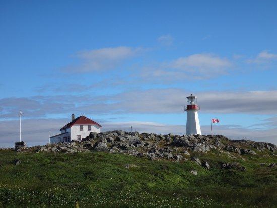 Bilde fra Quirpon Island