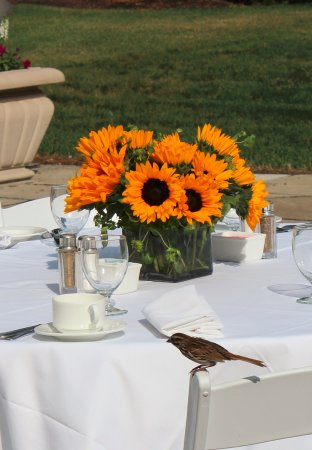 The Greenbrier: Beautiful for weddings -- this was our outdoor brunch table.