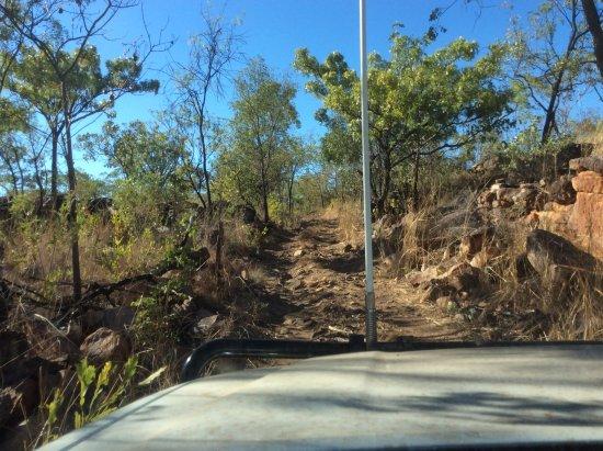 Gibb River Road Foto