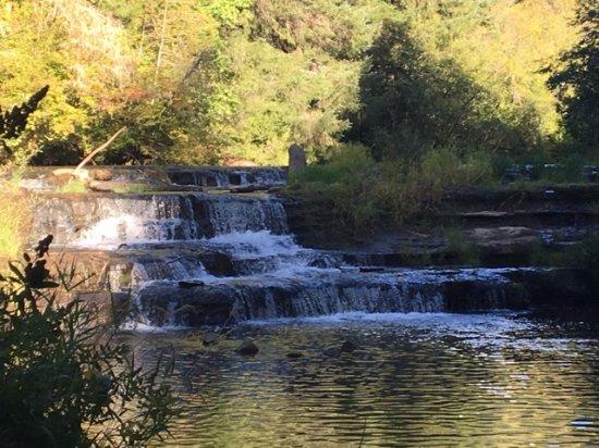 Siuslaw Falls