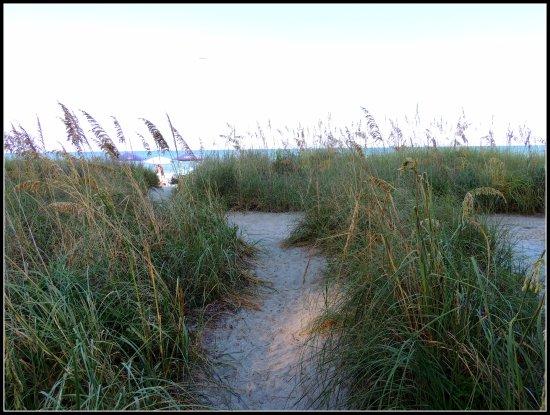 Mystic Sea Resort: The path to the beach