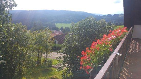 Feldbergblick Pension-Gastehaus