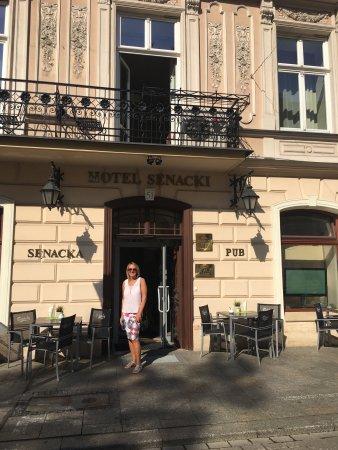 Senacki Hotel: photo1.jpg