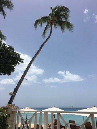 Paynes Bay, Barbados: photo3.jpg