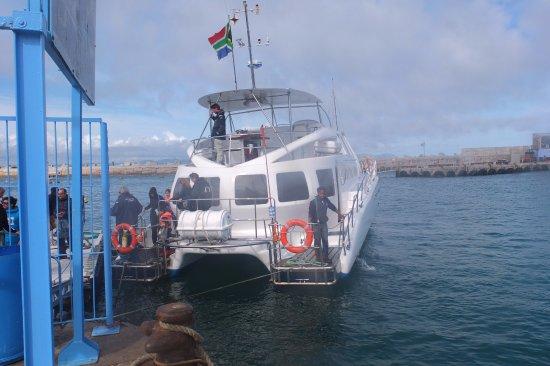 Hermanus, Republika Południowej Afryki: la barca