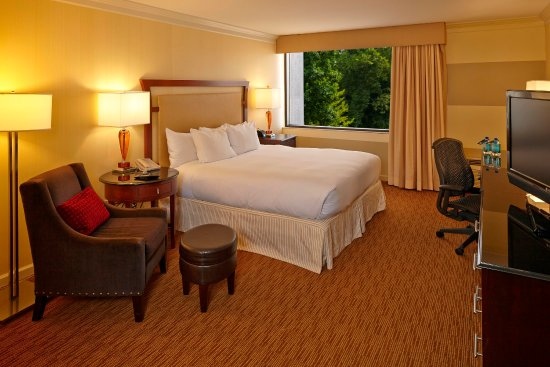 Hilton North Raleigh/Midtown: Guest Rooms
