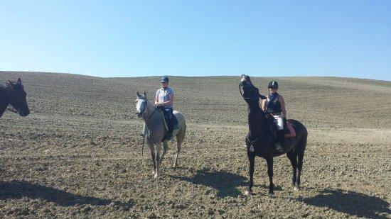 Agriturismo La Collina: A cavallo della Val d'Orcia