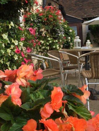 Tenbury Wells, UK: patio in the summer