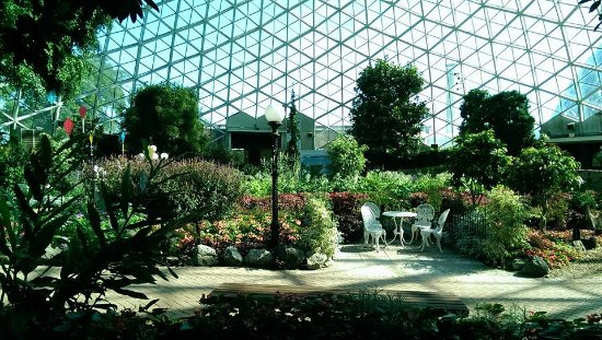 Mitchell Park Horticultural Conservatory (The Domes): August 2015