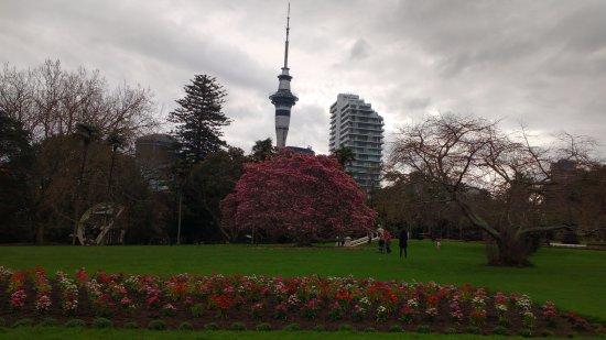 Albert-Park: Albert park