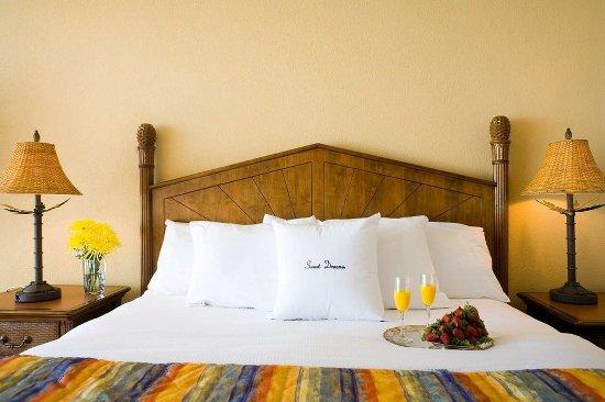 North Redington Beach, FL: King Bed Sweet Dreams