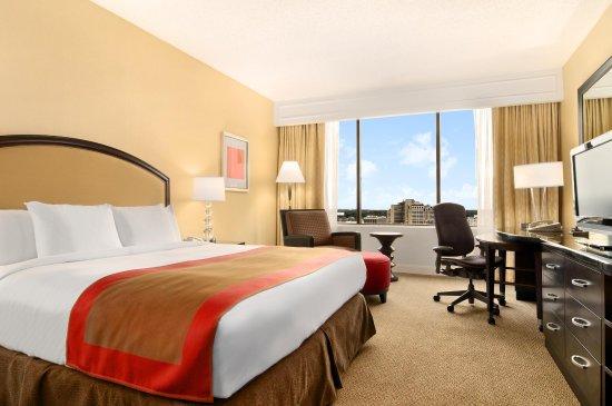 Hilton Atlanta: King Room