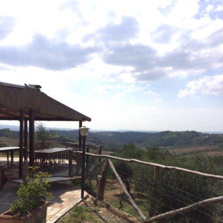 Montespertoli, Italia: photo2.jpg