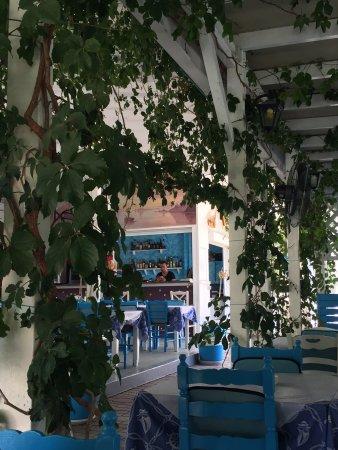 Taverna Andreas: photo4.jpg