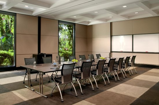 Hilton Cairns : Meeting Room