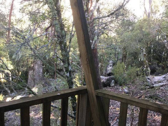 Cradle Mountain Wilderness Village: View out from cabin 5