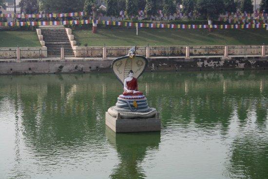Muchalinda Lake: Buddha idol in the pond. King Naga protecting him while on meditation.