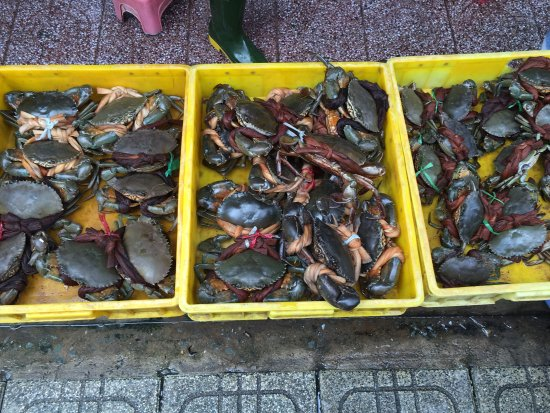 """""""Mai"""" Home - The Saigon Culinary Art Centre: photo1.jpg"""