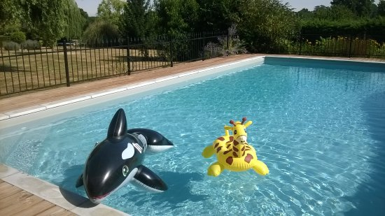 Allemans, France: New guests at the pool