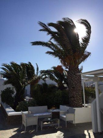 Milena Hotel รูปภาพ