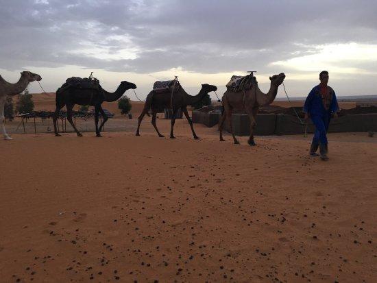 Kasbah Le Touareg: Le désert marocain avec son charme