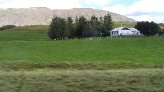 Iceland Horizon: View from the mini bus