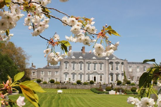 Castle Durrow : Castle in the Spring
