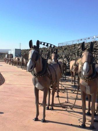 Boron, CA: 20 Mule Team
