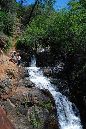 Hidden Falls - Picture of Hidden Falls Regional Park, Auburn ... on hidden falls hike auburn ca, hidden falls park auburn california, hidden falls adventure park trail map,