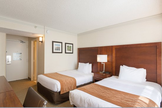 Comfort Inn by the Bay: Guest Room