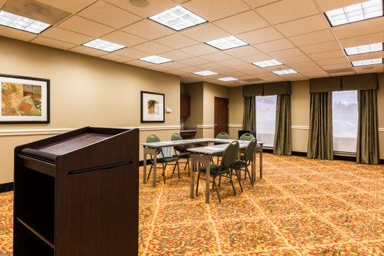 Comfort Suites Westchase: Meeting Room