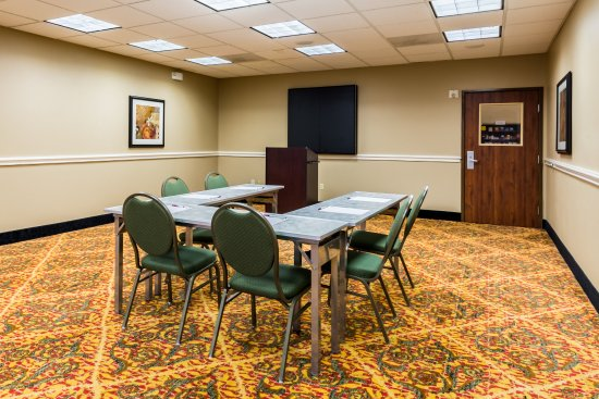 Comfort Suites Westchase: Meeting Room