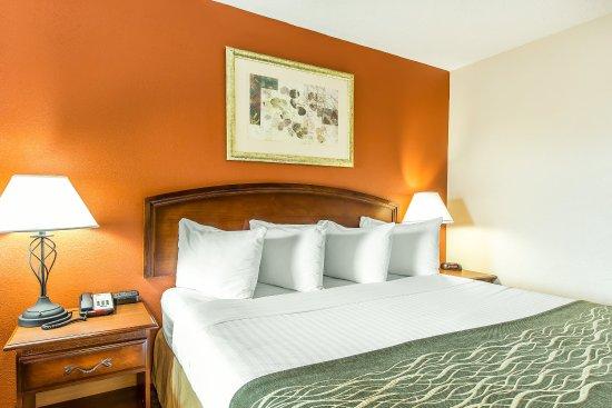 Auburn, AL: Guest room