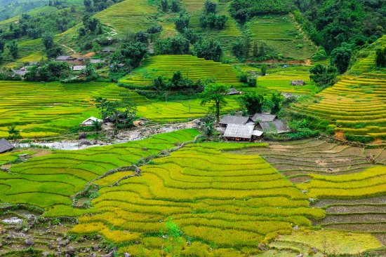 Sapa Authentic Tour