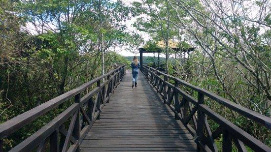 Puerto Libertad, Argentina: O deck leva até um mirante para o Rio Paraná