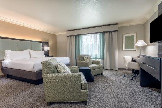 Holiday Inn Auburn: Executive king bedded guest room