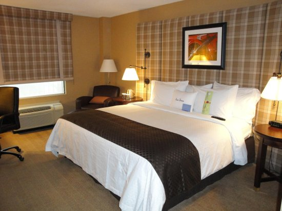 DoubleTree by Hilton Cincinnati Airport Hotel: King Guest Room