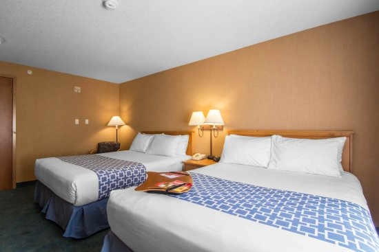Econo Lodge Inn & Suites University: Guest Room