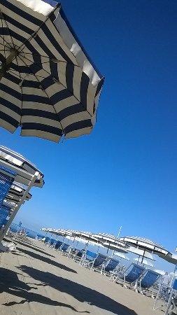 Bagno amedea viareggio italy updated 2018 top tips before you go with photos tripadvisor - Bagno amedea viareggio ...