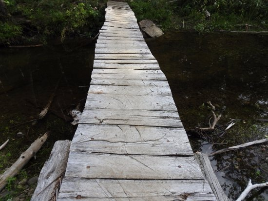 West Forks, ME: bridge along the trail