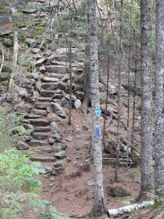West Forks, ME: staircase with the blue marker , the blue markers help especially on the way back down